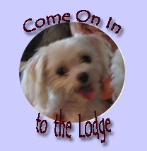 We're going to the Lodge !